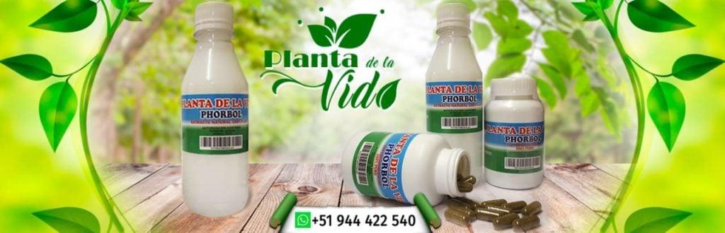 planta de la vida perú